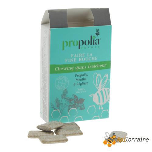 Chewing gum Propolis & Menthe CHGUMMENT apilorraine/propolia